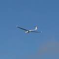 There were several gliders out today riding the wind.