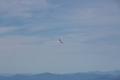More Gliding