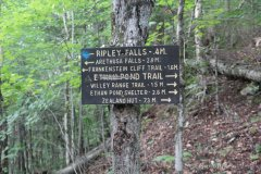 2021-09-11-FOT48-Mount-Willey_05
